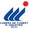 Raport privind activitatea CCI Cluj pe primul semestru al anului  2010