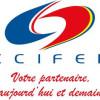 Camera Franceză de Comerţ din România propune reunirea ANRE cu ANRSC