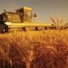 Solicitare colaborare in domeniul agriculturii