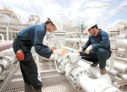 ANRE: Nu am decis preţul gazelor, dar este posibil să fie indexat cu inflaţia de la 1 iulie