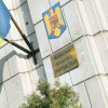 Vlădescu: Bugetul pe anul 2011 prevede o creştere economică de 1,5-2% şi un deficit de 4,4% din PIB