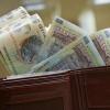 Gherghina (MFP): Salariile bugetarilor ar putea fi majorate în medie cu 15% în 2011