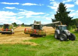 Planul de subvenţionare a agriculturii a fost aprobat de către Executiv