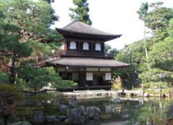 Japonia a adoptat un buget record, de 1.130 de miliarde de dolari