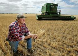 BNR: Fermierii români nu pot garanta un credit agricol pentru că nu există o piaţă a terenurilor