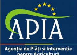 APIA a plătit 97,7% din sprijinul european alocat României pentru finanţarea schemelor SAPS 2010
