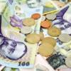 Leul este printre cele mai stabile monede din regiune, susţine Popa