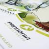 Vânzările CIG Pannonia în România vor fi realizate prin intermediul activităţii transfrontaliere