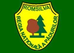 Profitul brut al Romsilva a crescut de 2,8 ori în primele nouă luni, la 52,3 milioane lei