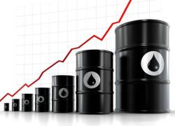 Preţul petrolului se va dubla în cazul unui embargo impus de Occident, avertizează Iranul