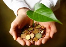Borbely: Am încheiat contracte pentru economia verde de circa trei miliarde de lei