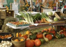 România va face parte din Asociaţia mondială a comerţului cu produse bio