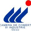RAPORT PRIVIND ACTIVITATEA  CAMEREI DE COMERŢ ŞI INDUSTRIE CLUJ PE ANUL 2011