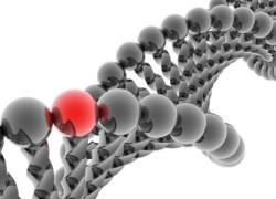 Misiune economică pentru biotehnologie, în India