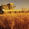 Reuniunea internaţională a producătorilor şi exportatorilor de cereale, în Ucraina