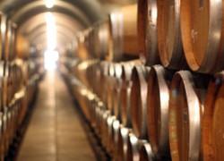 "Vin si bauturi spirtoase de origine vinica in cadrul Concursului International ""VINANDINO 2013"""