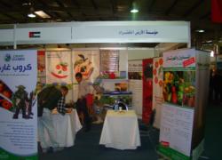 A 8-a ediţie a Festivalului Internaţional SAWSANA